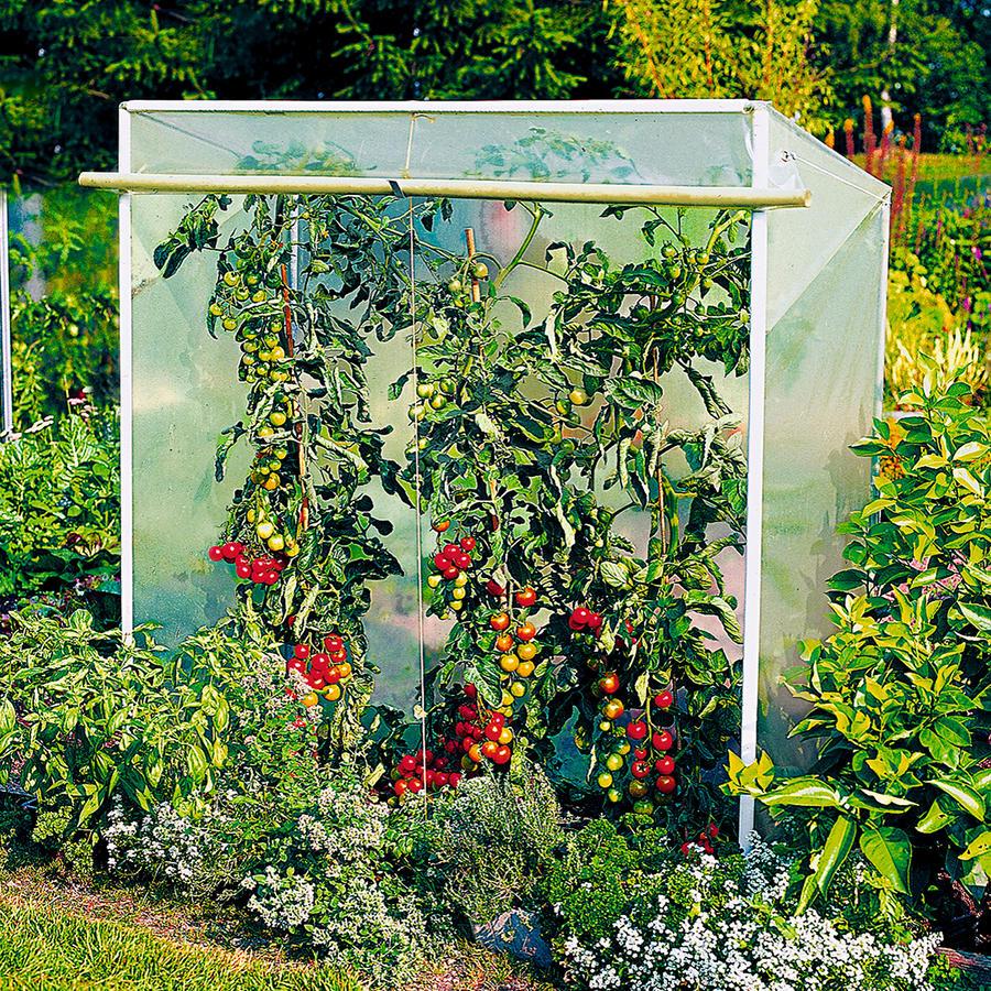 Tomatenhaus Grosse 1 150 Cm X 60 Cm Tomatenhaus Gewachshauser