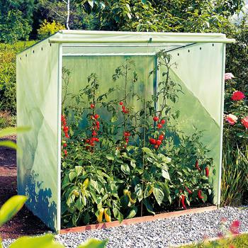 Tomatenhaus - Tomatenhaus Größe 2 150 cm x 110 cm